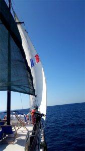 Sailing with orao